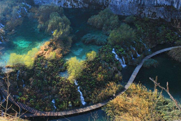 حديقة تيكال في غواتيمالا