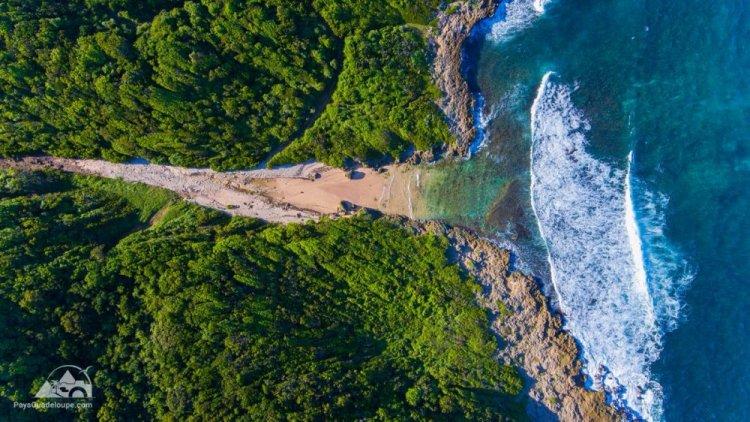 جزر غوادلوب