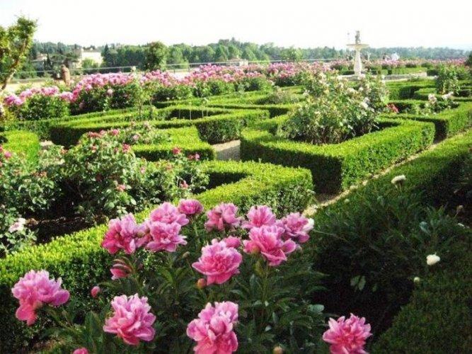حدائق بوبولي في فلورنسا