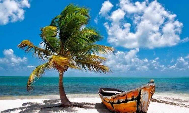 شواطئ فلوريدا الساحرة