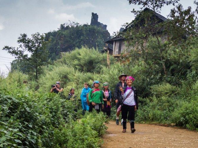 السياح في غابات سابا