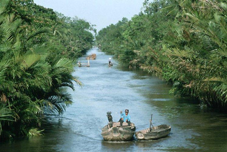 قوارب عائمة في نهر ميكونغ