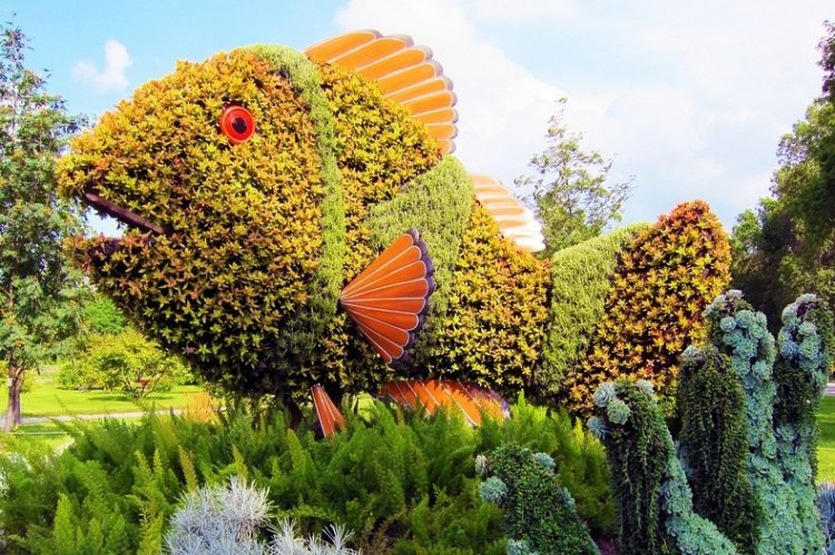 تمثال سمكة منحوت من النباتات