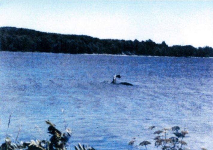 بحيرة شامبلين