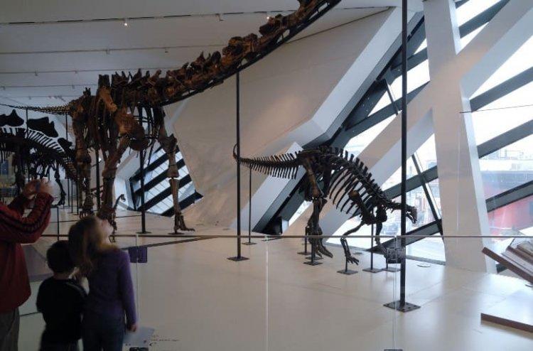 التقاط اروع الصور التذكارية في متحف اونتاريو الملكي