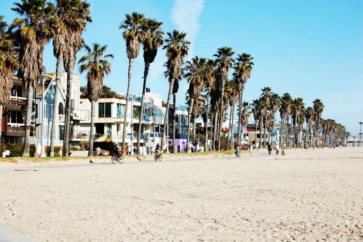 شاطئ فينيس | فينيس بيتش في لوس أنجلوس