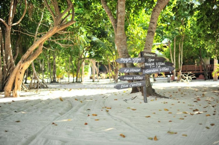 الطبيعة في جزيرة بولا بوم بوم