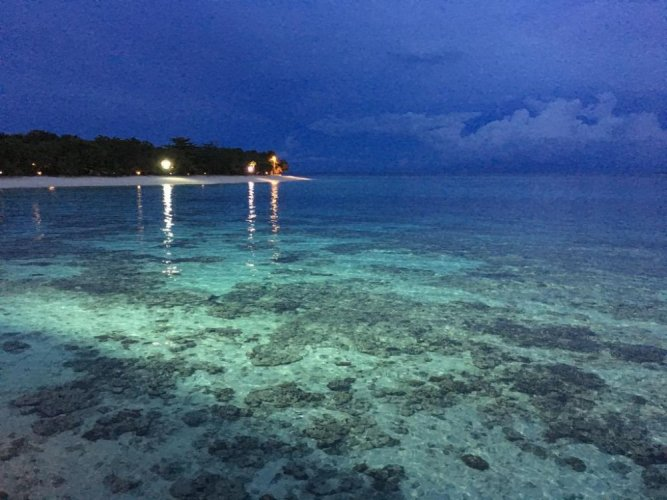 الحياة البحرية في جزيرة بولا بوم بوم