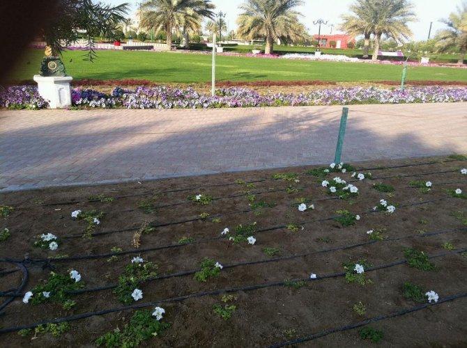 حدائق الصحوة في سلطنة عمان