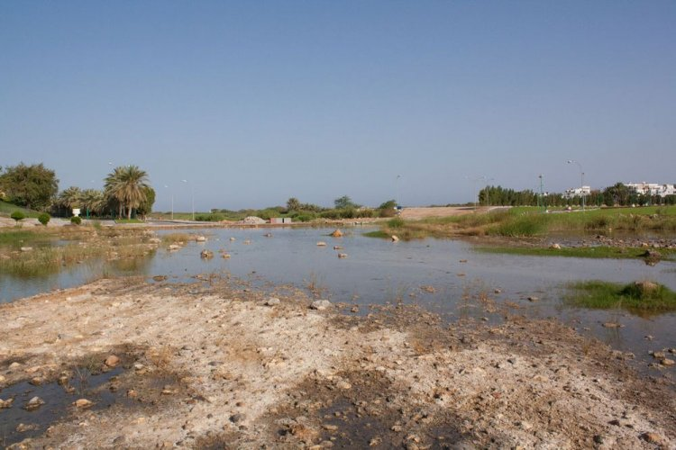 حديقة القرم الطبيعية في سلطنة عمان