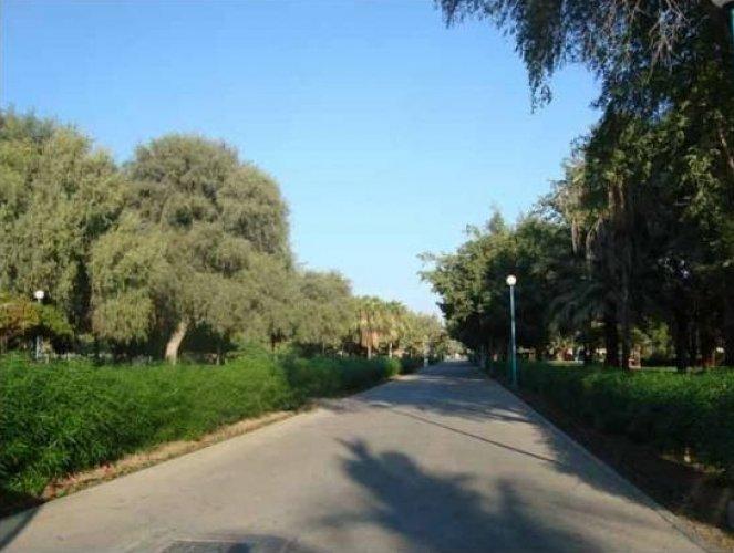 مدخل الحديقة في سلطنة عمان