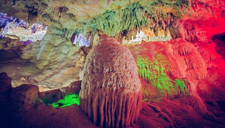 محمية وادي سنور أقدم محمية في العالم