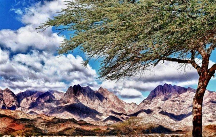 محمية جبل علبة متنزه وطني فريد