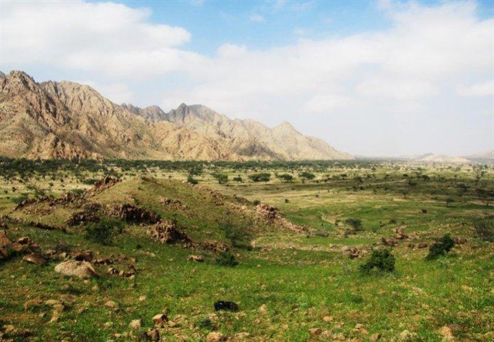التنوع النباتى والحياة البرية والتراكيب والخامات الجيولوجية في محمية جبل علبة