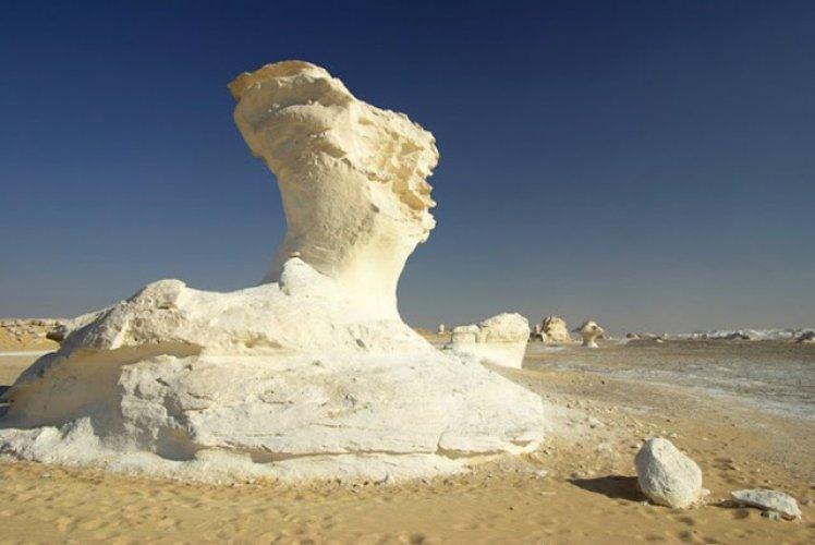 حفريات ما قبل التاريخ في الصحراء البيضاء