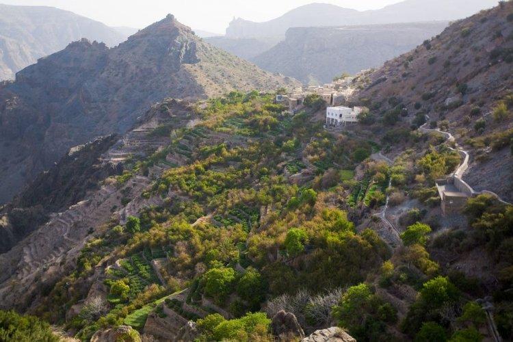 الجبل الاخضر في سلطنة عمان