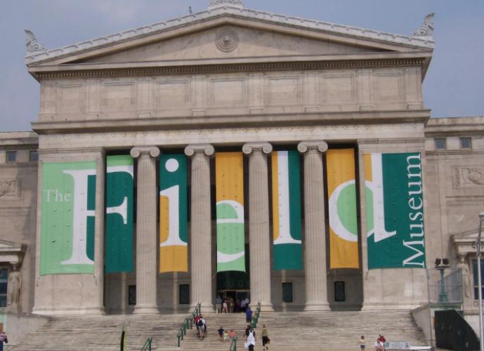 متحف الميداني للتاريخ الطبيعي