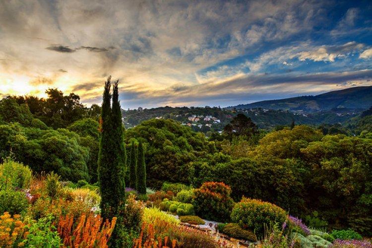 حديقة دنيدن النباتية