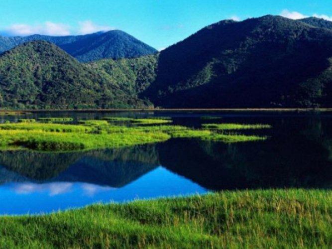 خليج الجزر في نيوزيلندا