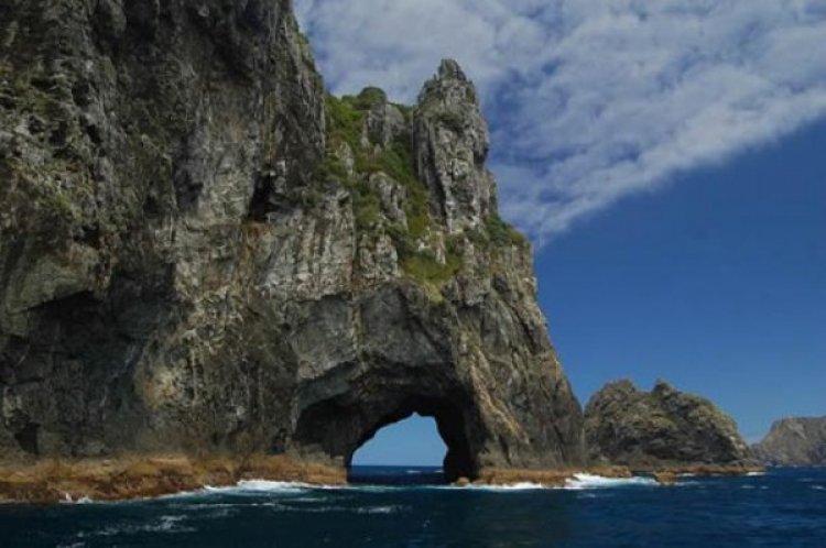 خليج الجزرخليج الجزر في نيوزيلندا