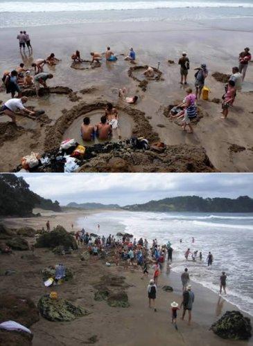 شاطئ المياه الساخنة في نيوزيلندا