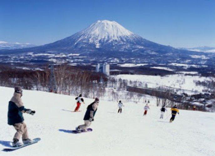 التزلج علي الثلوج في هوكايدو