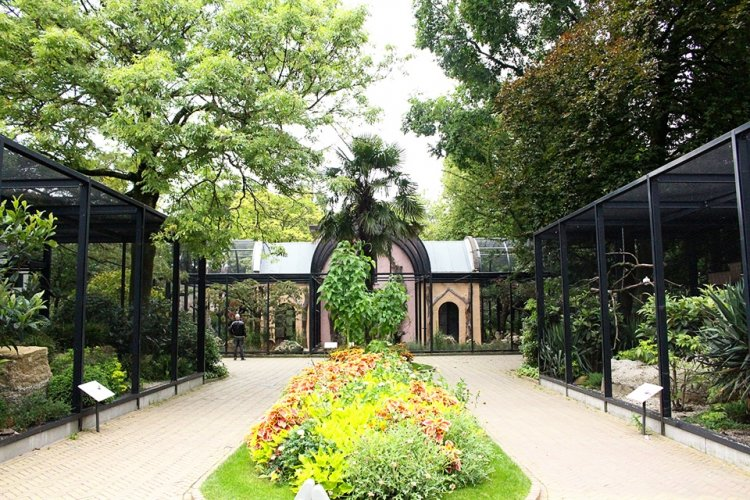 حديقة حيوان ارتيس