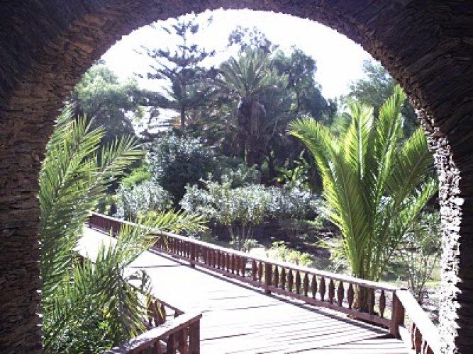 من داخل حديقة أولهاو في أكادير