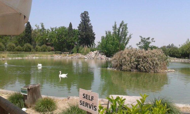 افتتح عام 1937 كأول حديقة حيوان في تركيا
