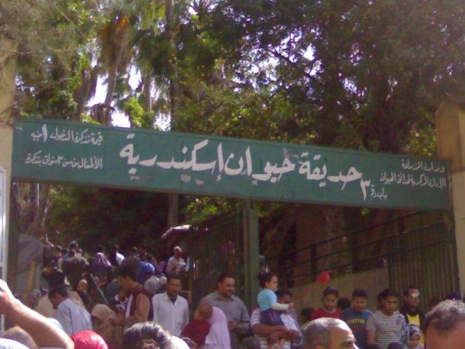 حديقة حيوان الإسكندرية في مصر