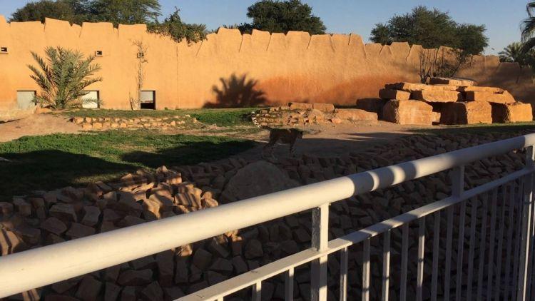 حديقة الحيوان - السعودية