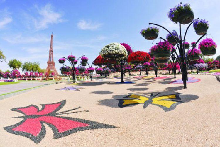تقع الحديقة بمنطقة زاخر في مدينة العين