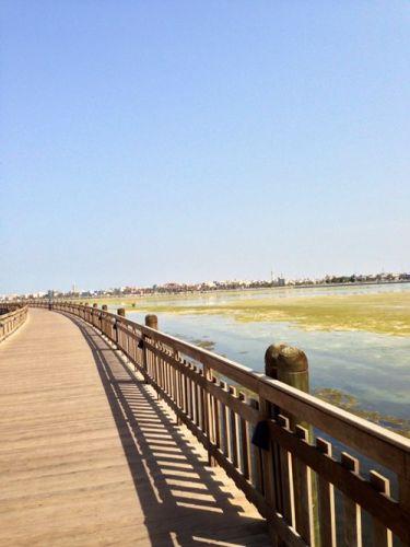 منتزه دوحة عراد في البحرين