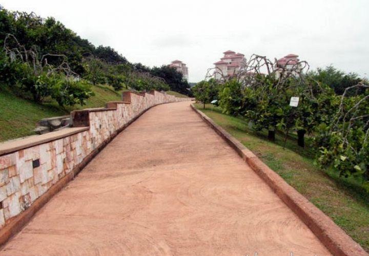 حديقة التراث الزراع