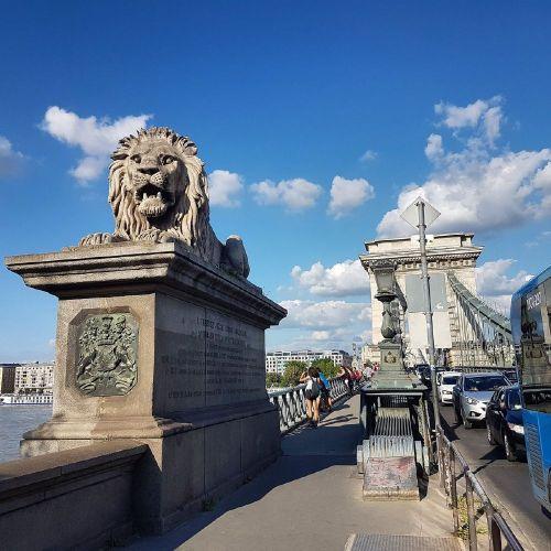 جسر زيتشيني المعلق