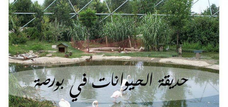 افتتحت حديقة الحيوانات في بورصة عام 1998