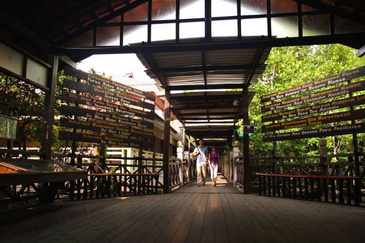 حديقة تانجونج بياي