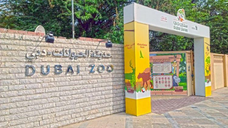 حديقة حيوانات جميرا في دبي