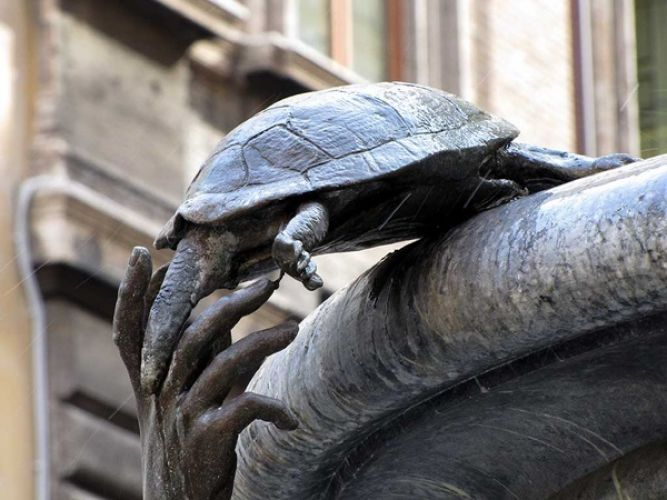 نافورة السلاحف