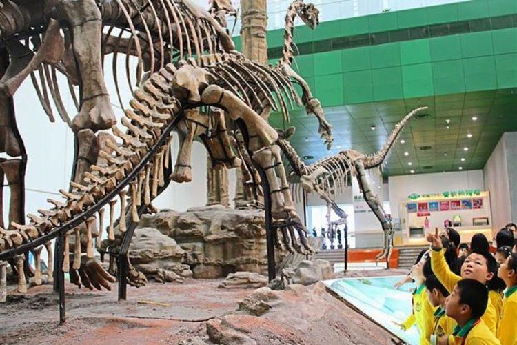 متحف العلوم والتكنولوجيافي شانغهاي - الصين