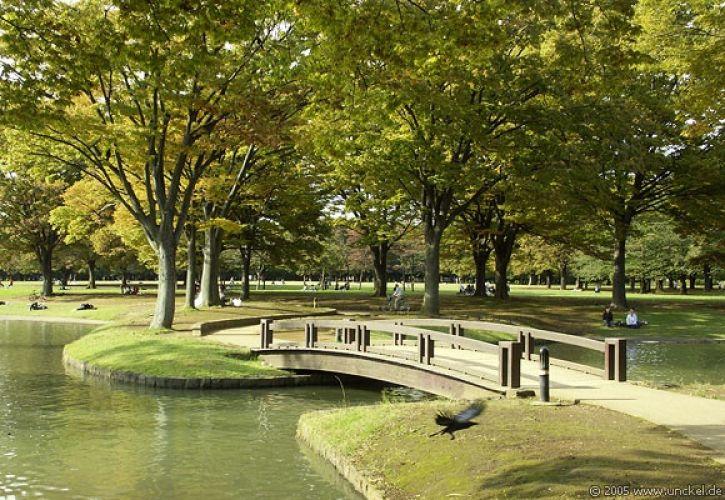 حديقة يويوغي في طوكيو - اليابان