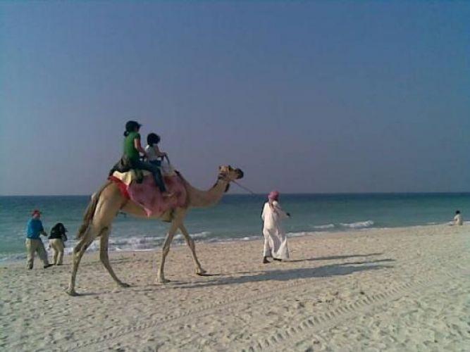 الشواطئ في عجمان