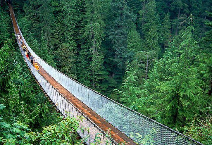جسر كابيلانو المعلق