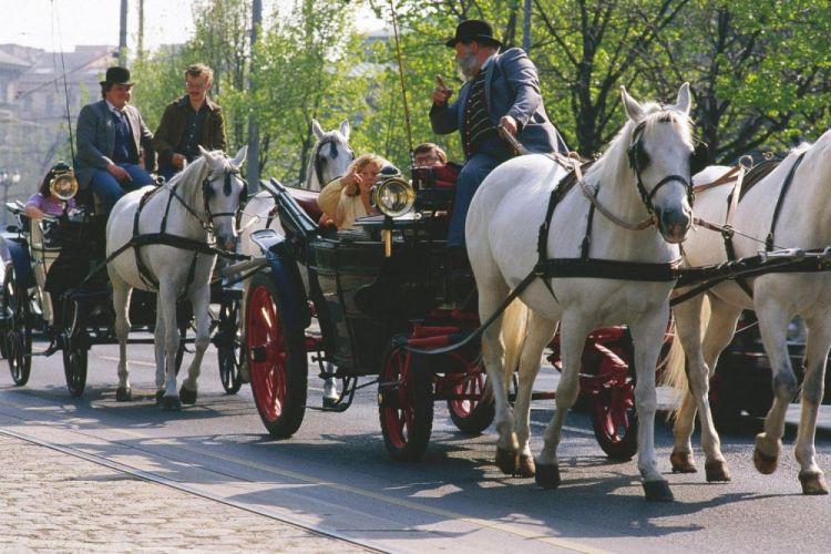 عربات الخيول