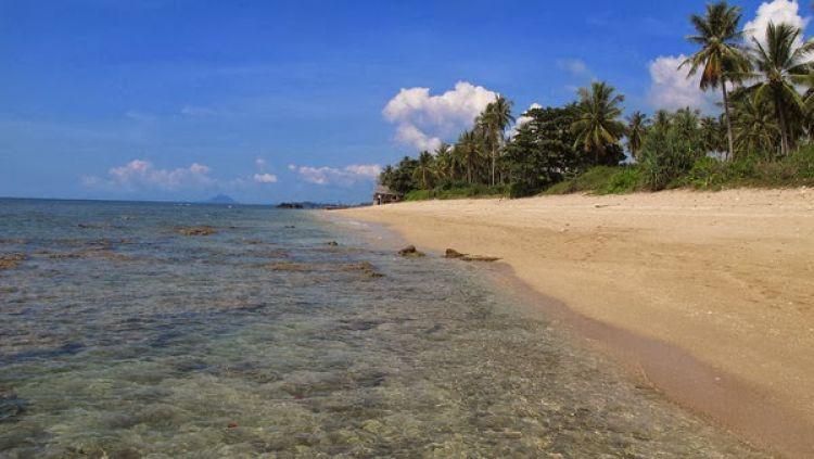 مناخ الجزيرة حار من شهر يناير إلى شهر ابريل