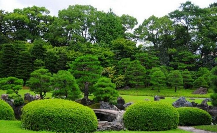 قلعة نيجو في كيوتو - اليابان
