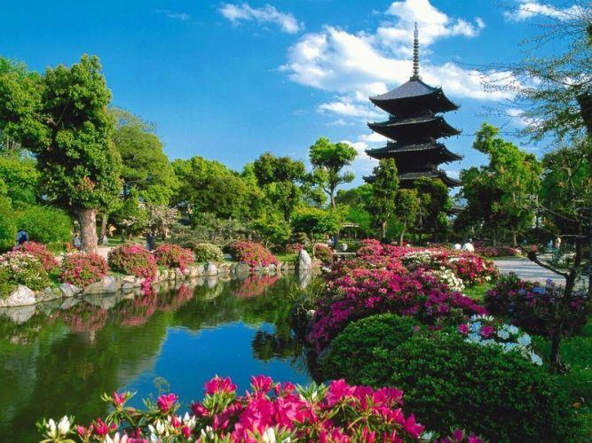 معبد توجي في كيوتو - اليابان