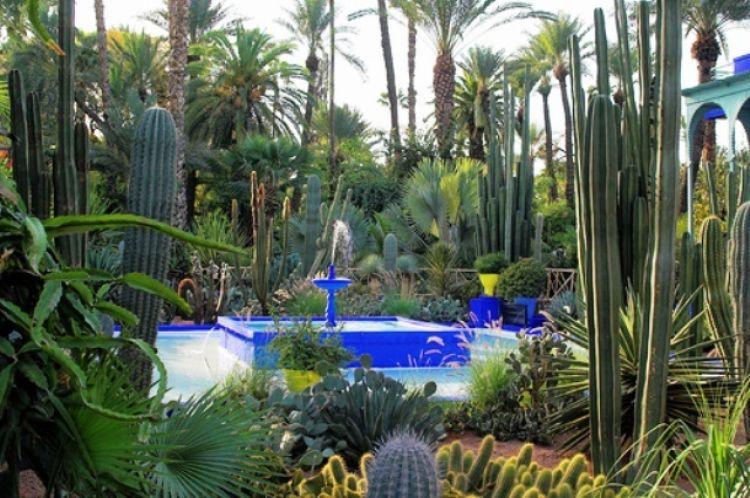 تقع حدائق الماجوريل في مراكش في كلي