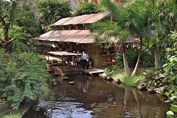 حديقة حيوان هانوفر