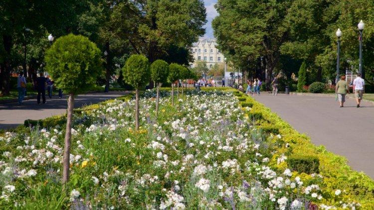 حديقة غوركي